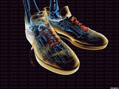 chaussures  de courses  à   pieds