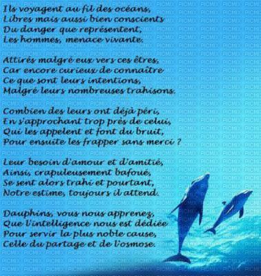 Dauphin Dans La Mer Picmix