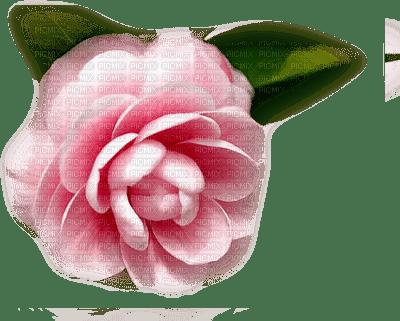 Kaz_Creations Deco Flower