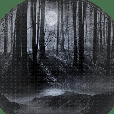 black forest moon foret noir lune