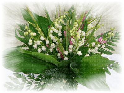 patymirabelle fleurs muguet