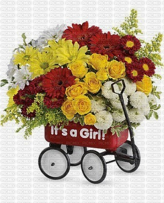 fleurs image bouquet it's a girl