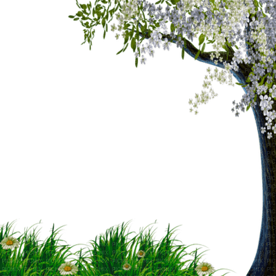spring printemps frühling primavera весна wiosna  branch leaves garden jardin tree arbre  fond background paysage landscape grass  flower fleur meadow baum tube
