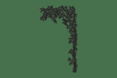 treeGS