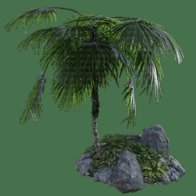 tropical, tropiikki, palm, palmu