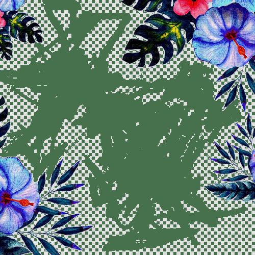 tropical flower frame cadre fleur 🌺🌺