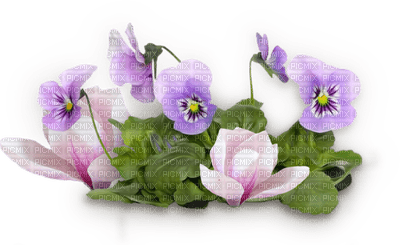 spring printemps  purlpe deco tube flower fleur blumen blossoms fleurs