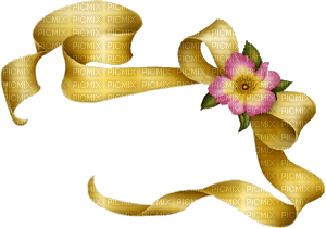 bows-yellow-flower