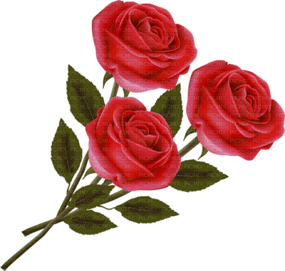 Kaz_Creations Flowers Red