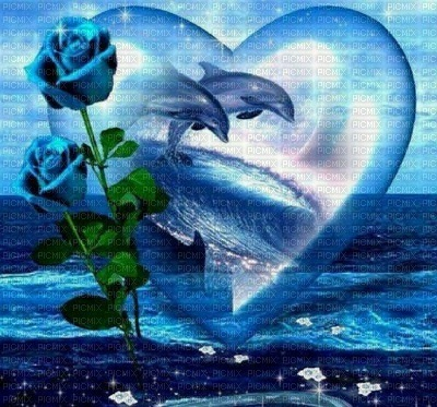 Blue Dolphins with Blue Rose in Blue Heart
