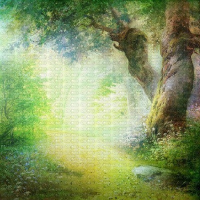 spring printemps paysage landscape fond background tree arbre baum garden jardin  summer ete forest foret