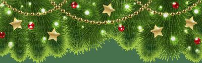 branch deco frame cadre rahmen zweige branches  fir tanne sapin     christmas noel xmas weihnachten Navidad рождество natal tube