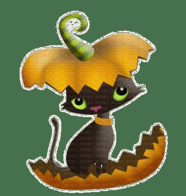 cat halloween chat