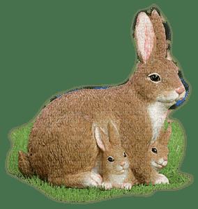 påsk-hare-kanin