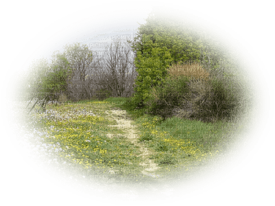 patymirabelle paysage