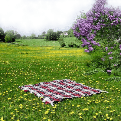spring printemps fond background hintergrund  image paysage  landscape garden jardin grass park parc prairie Meadow wiese lilac lilas picnic picknick tree arbre
