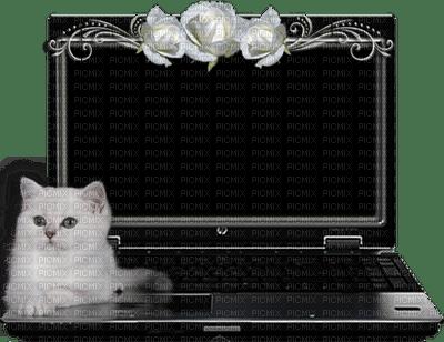 patymirababelle ordinateur