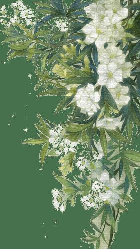 fleur, garden,summer,deko,spring,Pelageya