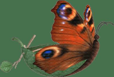 """Papillon barque """"Léa"""""""