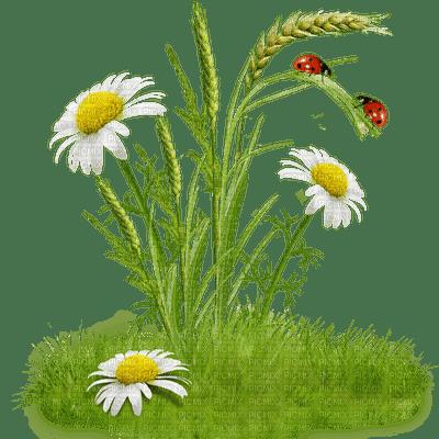 Kaz_Creations Deco Garden Spring Flowers Ladybug Grass