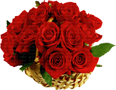 fleur Pelageya gif animation rose