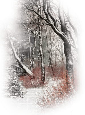 loly33 paysage hiver