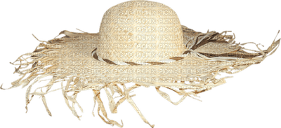 chapeau de plage.Cheyenne63