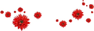 Red Flowers Deco