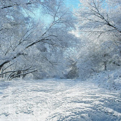 fond winter bp