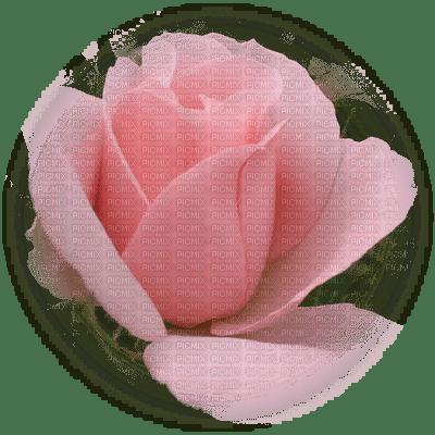 patymirabelle fleurs rose
