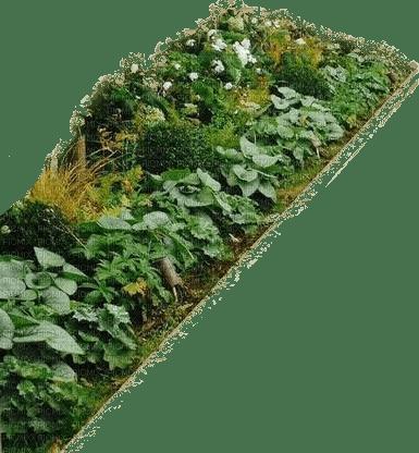 Gartenbeet