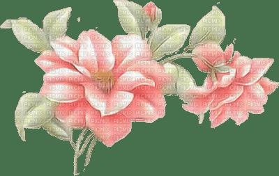 fleurs -c