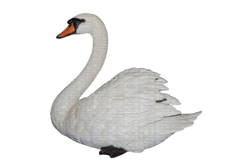Kaz_Creations Swan Bird