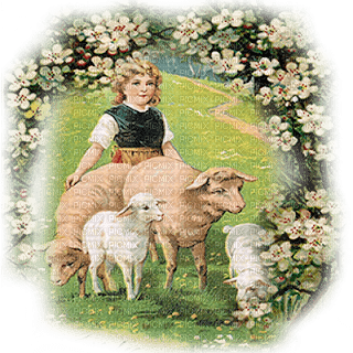 vintage child with sheep