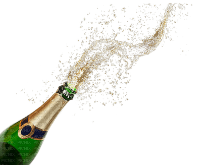 champagner bottle new year deco bonne annee