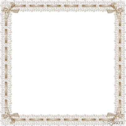 soave frame vintage lace ribbon bow border