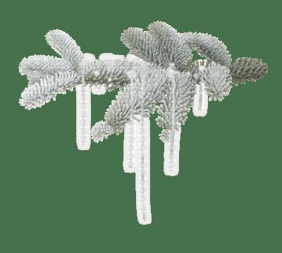 cecily-branche sapin hiver