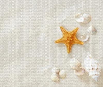 white background - Nitsa