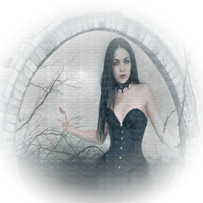goth woman fantasy gothique femme fantaisie