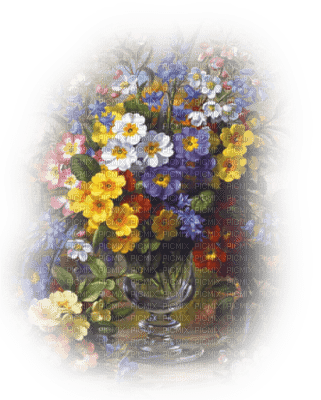 flowers  Nitsa
