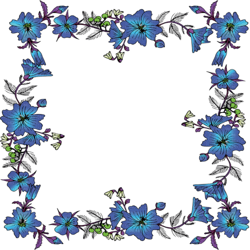 blue flower frame cadre fleur bleu