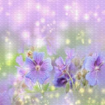 flower  bg spring fleur fond printemps