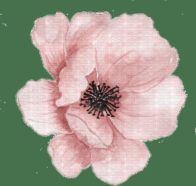 Fleur.Flower.Pink.aquarelle.Victoriabea