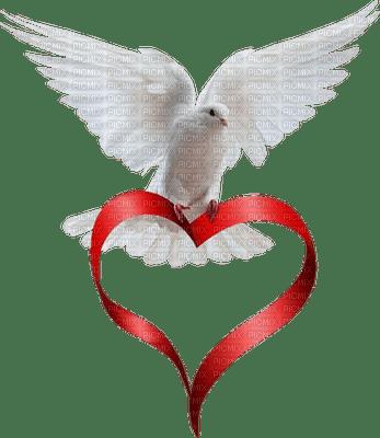 dove taube oiseau colombe valentine valentin heart coeur deco