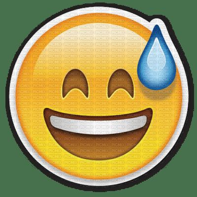 Risa Emoticon Picmix