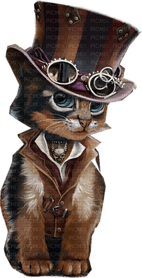 chat steampunk cat