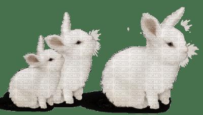 Lapin-White Rabbit-Noël-nature