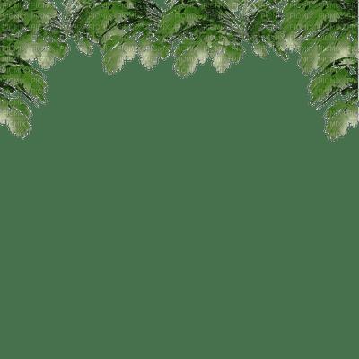leaves border feuilles