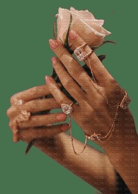 femme woman frau  tube human person people hand spring printemps main mains hands flower fleur rose deco