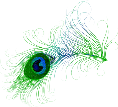 Kaz_Creations Deco Peacock Feather